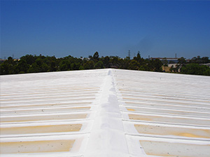 Waterproofing Roof Top